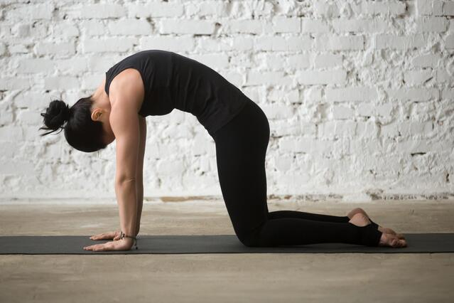 AdobeStock 144090118.jpeg?t=1511888173047&width=640&name=AdobeStock 144090118 - 6 Yoga Poses to Try For Back Pain